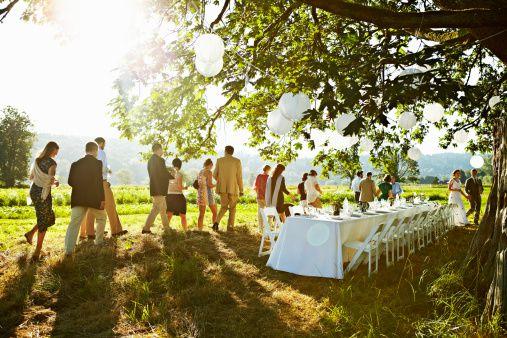 Wedding Eco