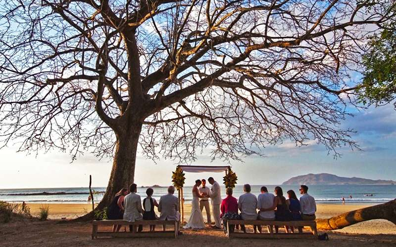 discover wedding planning tips