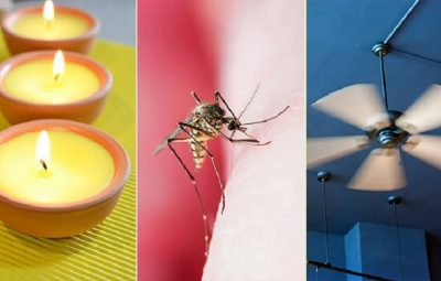 How to prevent mosquito bites naturally